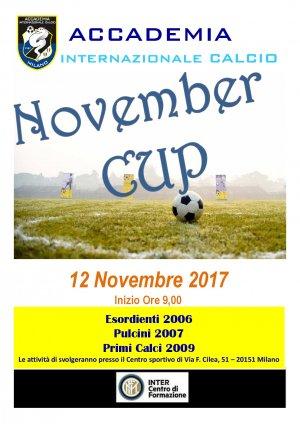 NOVEMBER CUP