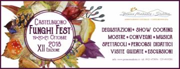 A Castelbuono un week end all'insegna del fungo: convegni, musica e spettacoli
