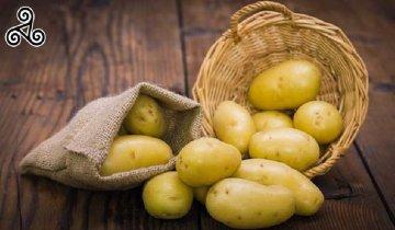 La patata novella di Siracusa presto Dop