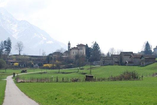 Ludiano estate
