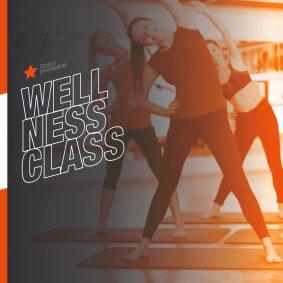 Wellness Class