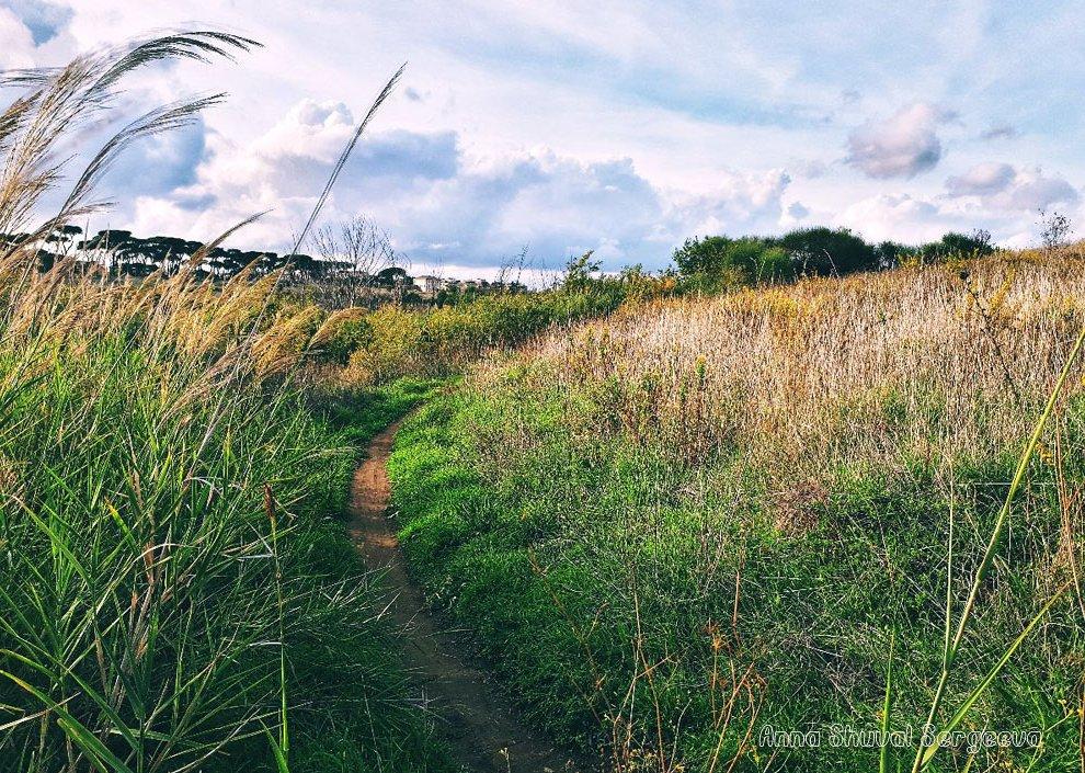 Escursione nella Riserva Naturale dell'Insugherata