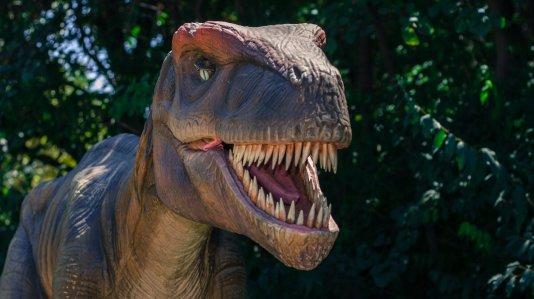 Dinosauri un città