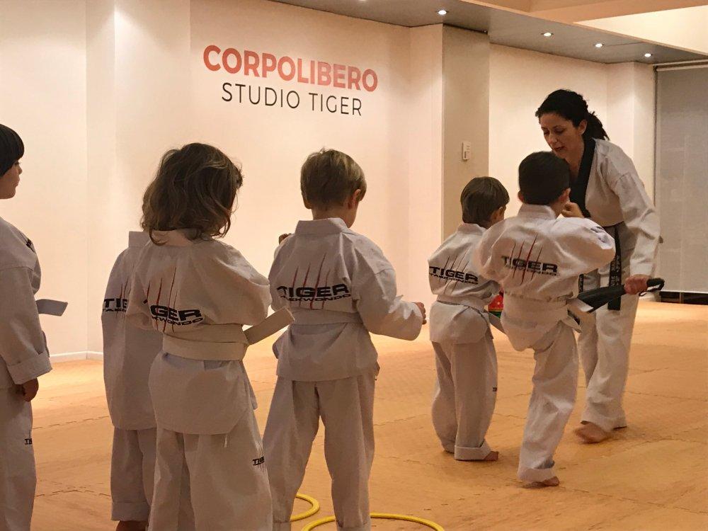 Taekwondo Bambini - Studio Tiger