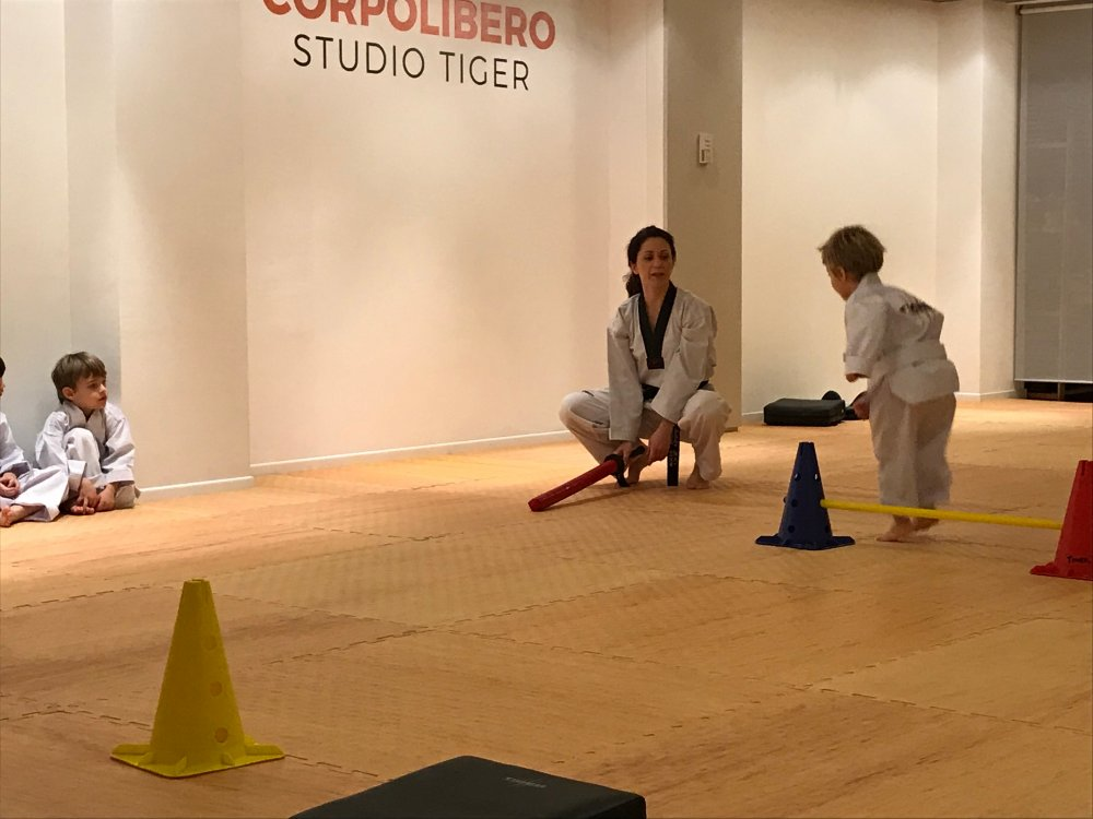 Taekwondo Bambini - Studio Tiger Milano