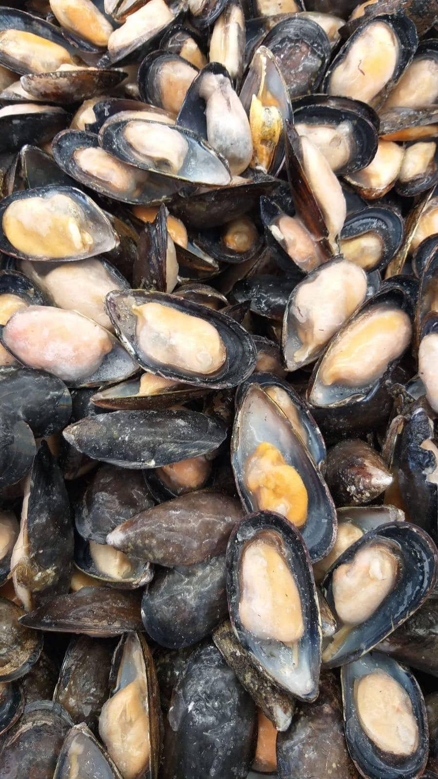 Jesi - Sconto 20% Cozze Cilene 1/2 Guscio Scottate | Sapore di Mare | Jesi, Via Bordoni, 7 | Tel. 0731 208745 | Offerta valida fino al 31/05/19