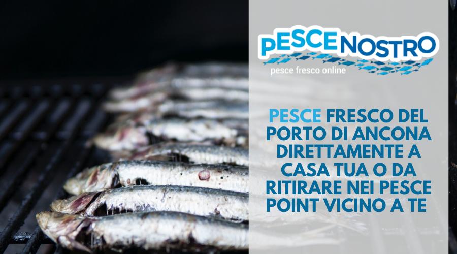 Jesi - Pesce Fresco a Domicilio | Pesce Nostro | Viale Don Minzoni 3 | Tel. 0731299084