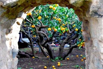 Giardino Pantesco Donnafugata: sorprendente opera di pietra lavica