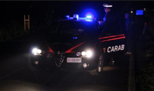 Vigevano24: tentano la spaccata al discount ma fuggono a mani vuote
