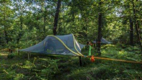 Vigevano24: Vigevano, Nido nel Parco: il turismo sostenibile piace