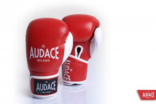 AUDACE Gloves