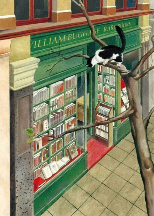 Cinque proposte operative per salvare le librerie in Italia